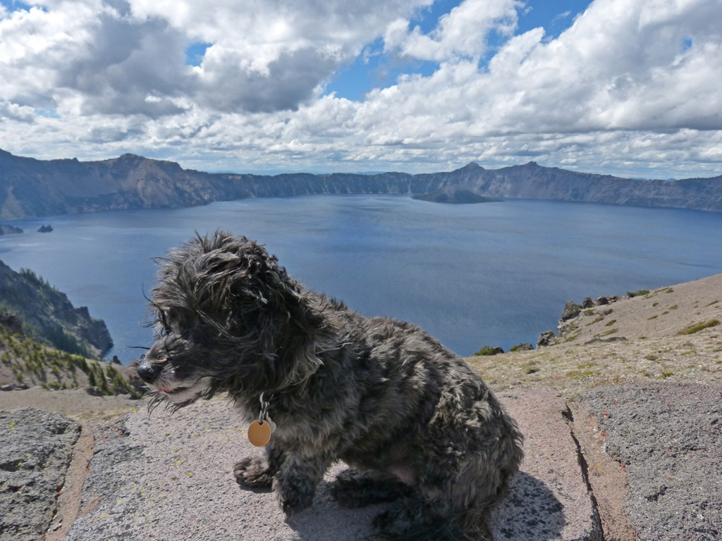 Skruffy Crater Lake National Park