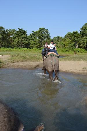calare pe elefant