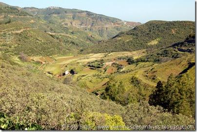 5134 Cruz Llanos-Lomo Carbonero