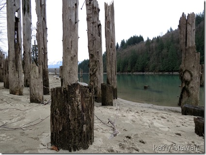 Pilings by the river