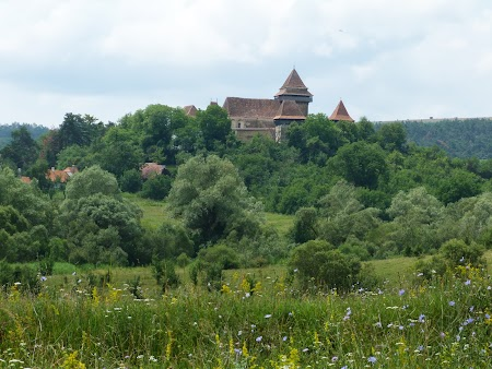 2Fortificatii sasesti in Transilvania: Biserica fortificata de la Viscri