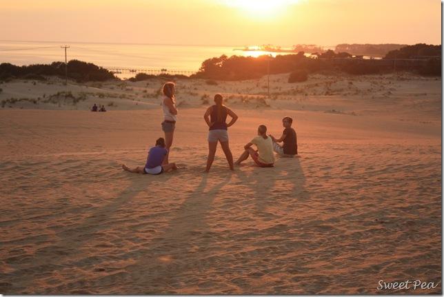 Beach Dunes5