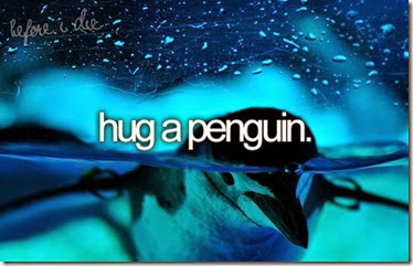 Bucket List - Hug a Penguin