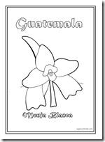 Colorear Dibujos De Guatemala Símbolos Patrios
