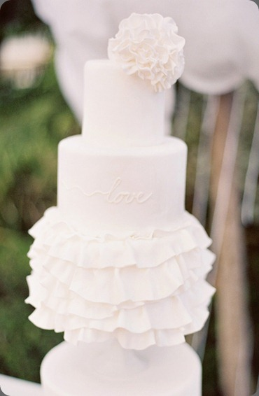 007104-r1-028cake goodness and jesi haack weddings