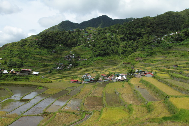 The stone walled Batad Rice terraces - a UNESCO world heritage site and eighth wonder of the world