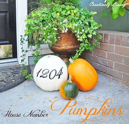 House-Number-Pumpkins-1.51-1024x982
