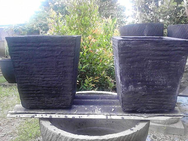 pot semen tanaman hias