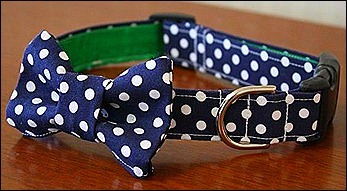 Polka dot collar