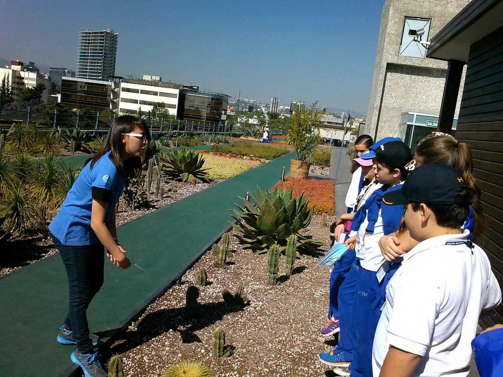 Infonavit: Fifth Grade Rocks!!: Infonavit's Green Roof