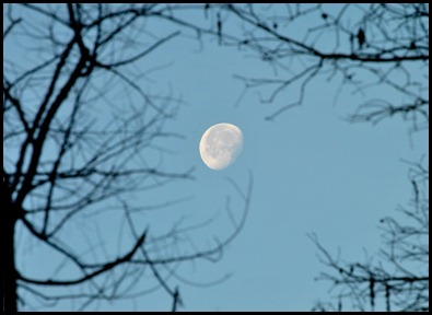 00- Morning Moon