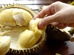 Durian-Fruit-Thai