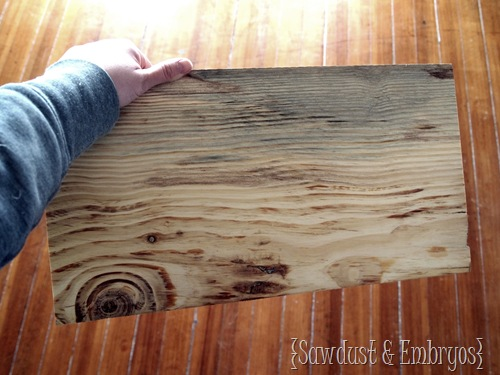 DIY Wooden State Plaque using simple Pine! {Sawdust and Embryos}