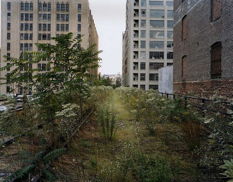high-line-new-york-16