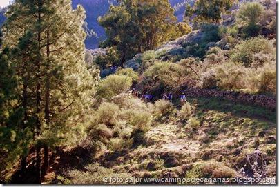 3333 Cueva Grande-Llanos Pez