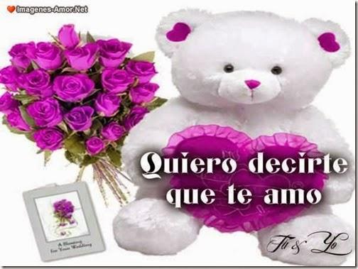 amor blogdeimagenes (15)