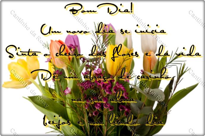 Vídeo De Bom Dia Com Lindas Flores De Fundo Para Enviar: Cantinho Da Rosy » Flores / Bom Dia