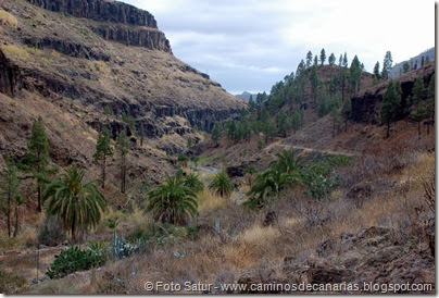 6949 Chira-Cruz Grande(Barranco Ayagaures)