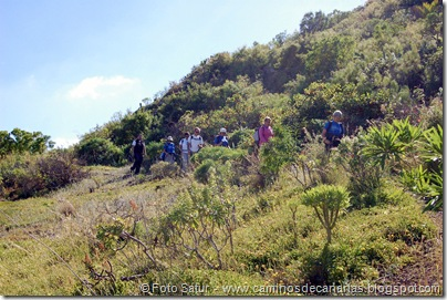4959 Montaña Alta-Guía