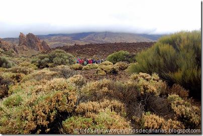 038 Cañadas del Teide