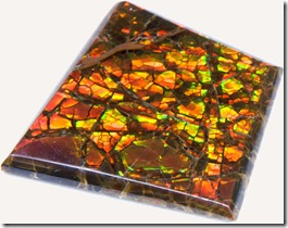 ammolite sample