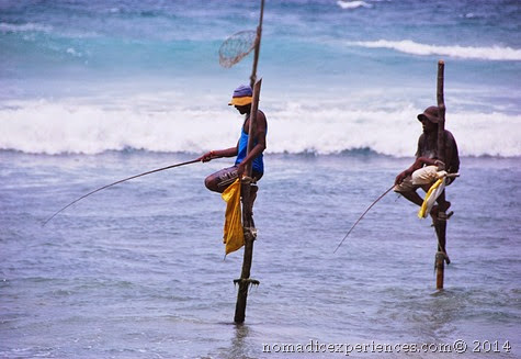 Stilt fishing2