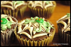 cupcakes 005-1