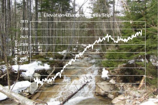 Altova StyleVision line chart