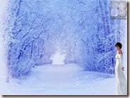 08_SA_Winter_1024x768