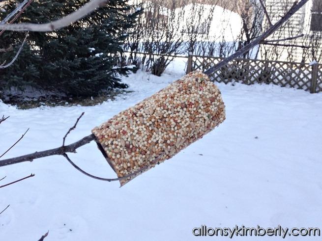 Cheap & Easy DIY Bird Feeder