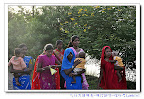 印度聖境之旅-無上的覺者-佛陀誕生(尼泊爾-倫比尼Lumbini)