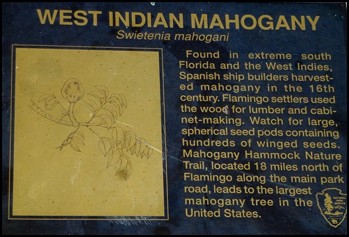 10c - Tree Walk - Mahogany Tree Sign
