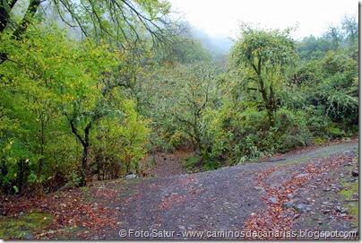 6839 Barranco Andén-Cueva Corcho(Barranco Andén)