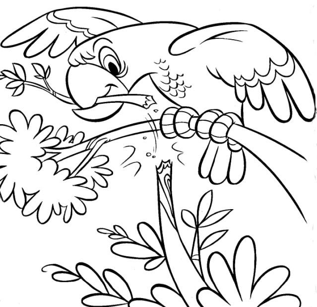 Pintar Desenhos Thumbgal