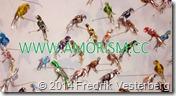 DSC01225.JPG Burkfåglar skulpturer av Thomas Karlsson Liljevalch 2014 med amorism