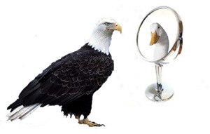 Eagle_Duck_Mirror