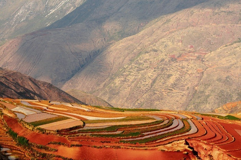 dongchuan-red-soil-12