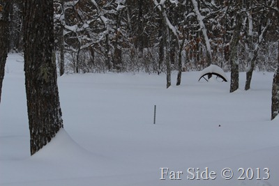 Snowstick and wheel Feb 11