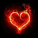 Immagine del profilo di Dany