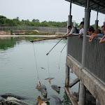 Тайланд 12.05.2012 5-58-19.JPG