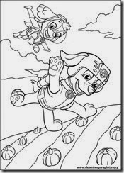 patrulha_canina_nick_desenhos_pintar_imprimir32