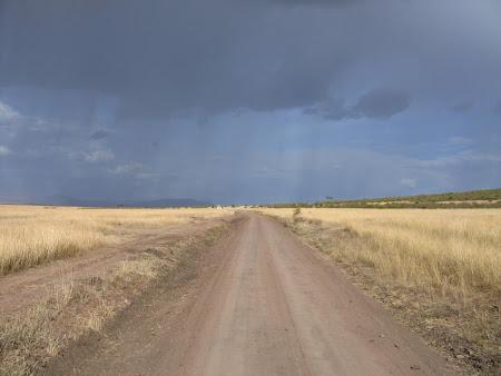 Safari Kenya: Masai Mara