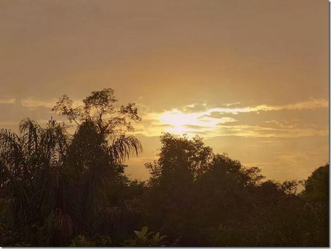 BR-319_Humaita_Manaus_Day_4_DSC05707