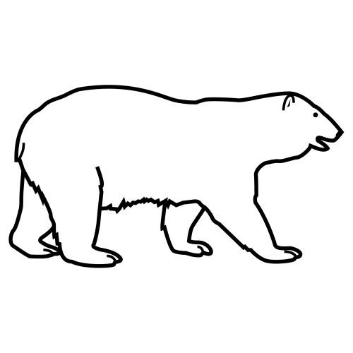 Dibujo Oso Polar Facil