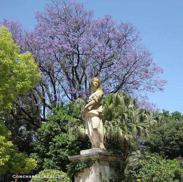 Parque de María Luisa - Mayo2011 Glorieta de la Concha (3).jpg