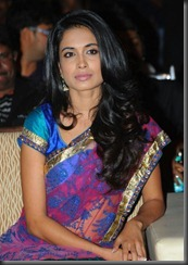 Sarah Jane Dias Saree Stills