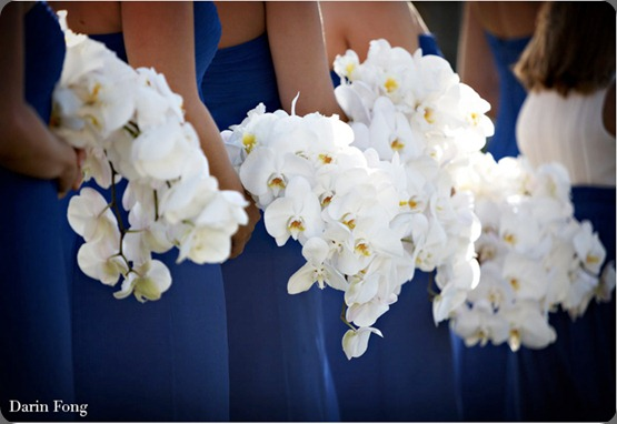 white-phalaenopsis-wedding-bouquet-aileen-tran-cobalt karen tran