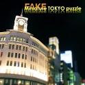 FAKE miniature TOKYO puzzle icon