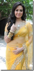 Actress Sana Khan at Nadigayin Diary Movie Audio Launch Stills