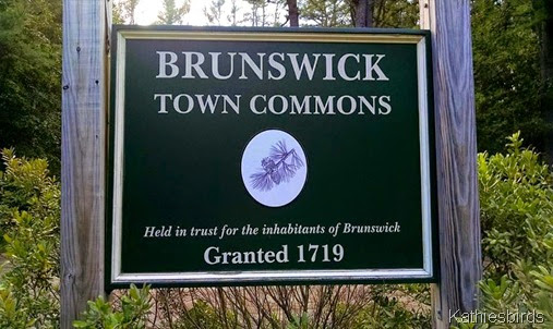 1. town commons sign 9-7-14